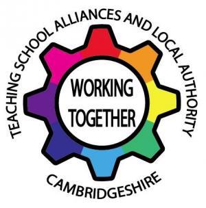 Teaching School Alliances and local authority